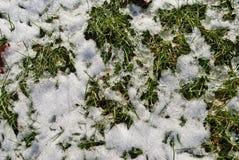 Nieve ligera en la tierra Fotografía de archivo