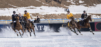 Nieve Polo World Cup Sankt Moritz 2016 fotografía de archivo libre de regalías