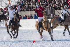 Nieve Polo World Cup Sankt Moritz 2016 Fotos de archivo