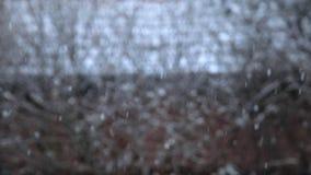 Nieve que cae contra la cantidad de la cámara lenta del fondo natural almacen de metraje de vídeo