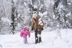 Nieve que cae de árboles Foto de archivo libre de regalías