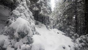Nieve que cae en bosque ilustración del vector