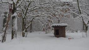 Nieve que cae en fondo de la perrera de madera almacen de metraje de vídeo
