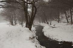 Nieve que cae en un bosque con el río en invierno Fotos de archivo
