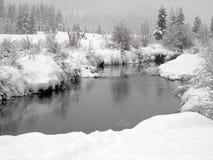 Nieve que cae en un río con las baterías nevosas en Whistl Imagen de archivo
