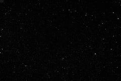 Nieve que cae real en fondo negro Foto de archivo libre de regalías