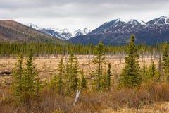 Nieve que derrite en el rango de Alaska Imagen de archivo