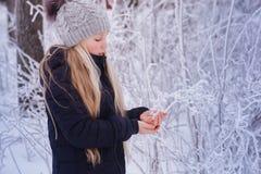 Nieve que sopla de la muchacha del invierno Belleza Girl modelo adolescente alegre que se divierte en parque del invierno Muchach Foto de archivo libre de regalías