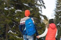 Nieve romántica Forest Outdoor Winter Walk Man de los pares y mujer que lleva a cabo vista posterior trasera de las manos Fotos de archivo libres de regalías