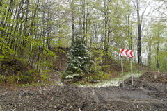 Nieve Rumania que cae cárpata Fotografía de archivo libre de regalías