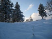 Nieve y cielo azul con las nubes y el palillo Fotos de archivo