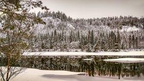 Nieve y el río Imágenes de archivo libres de regalías