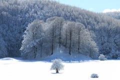 Nieve y invierno Fotos de archivo