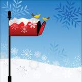 Nieve y pájaros rojos de la caja Fotos de archivo