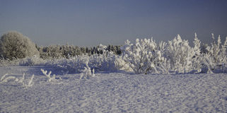 Nieves acumulada por la ventisca del invierno, invierno ruso Foto de archivo libre de regalías