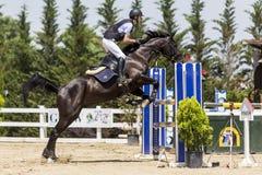Niewiadomy jeździec na koniu podczas rywalizaci dopasowywa jeździeckiego round Obraz Royalty Free