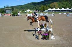 Niewiadomy jeździec na koniu Fotografia Stock