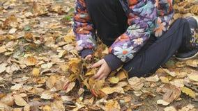 Niewiadomy małe dziecko w jesiennym parku zbiory