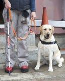 Niewidoma osoba z jej przewdonika psem Obrazy Stock