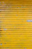 niewidomy kolor żółty Obraz Royalty Free
