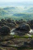 niewygładzona lasowa falezy zieleń Zdjęcie Stock