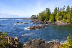 Niewygładzona linia brzegowa przy dzikim pokojowym śladem w Ucluelet, Vancouver wyspa, Kanada obrazy stock