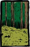 Niewygładzony lasowy pustkowie i mechata lasowa podłoga ilustracja wektor