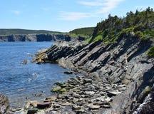 Niewygładzony linia brzegowa krajobraz wzdłuż Killick wybrzeża obraz stock