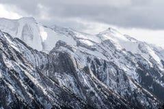 Niewygładzony mountainpeak stronniczo zakrywający w śniegu i sosnach obraz royalty free