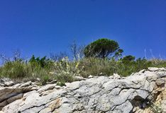 Niewygładzony pobocze teren, Bośnia, dalmatyńczyka wybrzeże zdjęcia stock