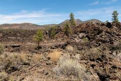 Niewygładzony pustynia krajobraz fotografia stock