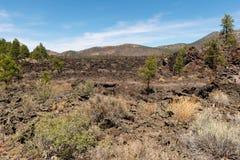 Niewygładzony pustynia krajobraz obraz royalty free