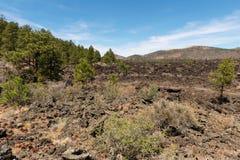 Niewygładzony pustynia krajobraz zdjęcie royalty free