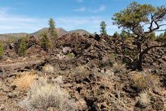 Niewygładzony pustynia krajobraz zdjęcie stock