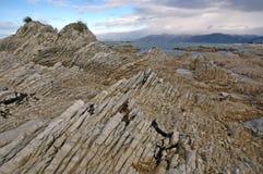 Niewygładzony wybrzeże Kaikoura, Nowa Zelandia zdjęcia royalty free