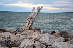 Niewygładzony wybrzeże Michigan przy półmrokiem fotografia stock