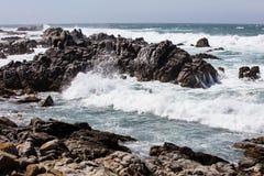 Niewygładzony wybrzeże w Monterey zatoce, Kalifornia Zdjęcia Royalty Free