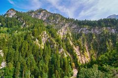 Niewygładzony wzgórze w Hohenschwangau fotografia stock