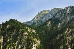 Niewygładzony wzgórze w Hohenschwangau obrazy stock