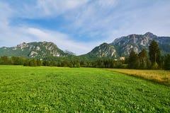 Niewygładzony wzgórze w Hohenschwangau zdjęcia stock