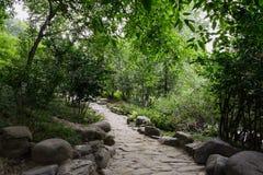 Niewygładzony zbocza footpath w cieniu na pogodnym letnim dniu zdjęcia royalty free