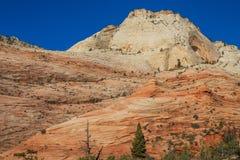 Niewygładzony Zion parka narodowego krajobraz zdjęcia royalty free