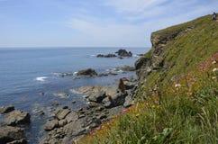 Niewygładzona linia brzegowa blisko jaszczurka punktu, Cornwall Obraz Royalty Free
