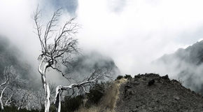 Niewyraźne góry Fotografia Stock