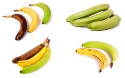 Niewyrobeni, dojrzali i przejrzali banany na białym tle, Ustawia o obraz stock