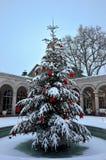 Śnieżysta dekoracyjna choinka outside Zdjęcia Stock