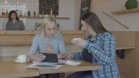 Niezależny freelancers networking online w kawiarni zbiory wideo