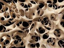 Niezdrowa kości struktura ilustracja wektor