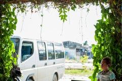 Niezidentyfikowana chłopiec asmat plemię na jaskrawym tle, rama zielone rośliny Obraz Stock