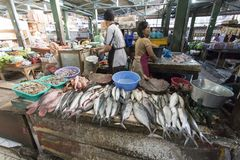 Niezidentyfikowana kobieta sprzedaje ryba Zdjęcia Royalty Free
